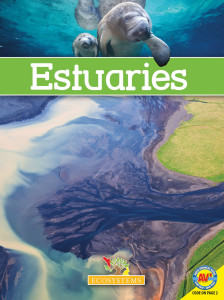 Ecosystems-Estuaries