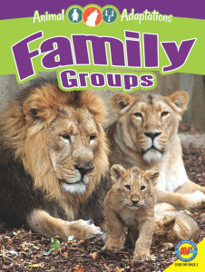 Family Groups sm